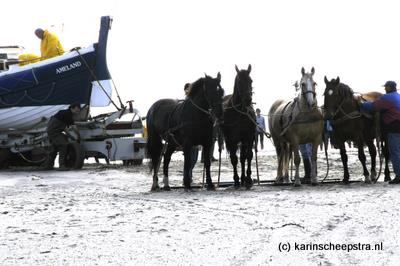 paardenreddingsboot 162KS-080716-004